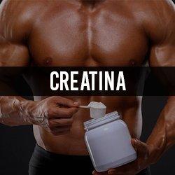 Creatina